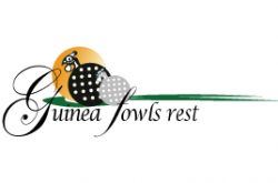 Guinea Fowls Rest