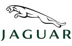 Jaguar Zimbabwe