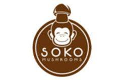 soko mushrooms