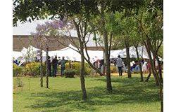 sungano gardens chitungwiza