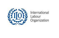 international labour organisation