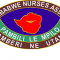 Zimbabwe Nurses Association