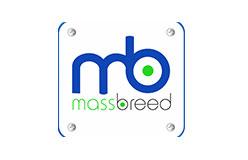 MassbreedInvestment1544190693
