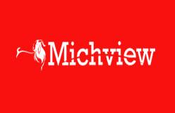 Michview1547194511
