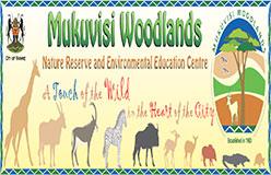 MukuvisiWoodlands1540373353