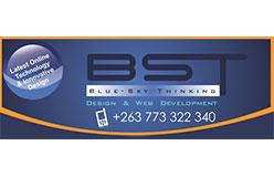 blueskythinking1543479010