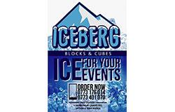 icebergice1544535914