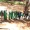 Jacaranda Montessori
