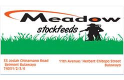 meadow1544191941