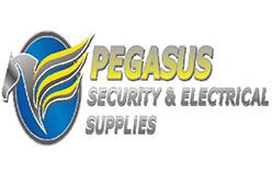 pegasus1543042898