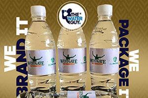 waterimage1599207891