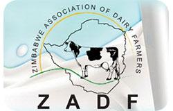 zadf1544010922